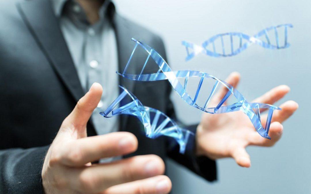Buch Erfolg; Die DNA des Erfolges